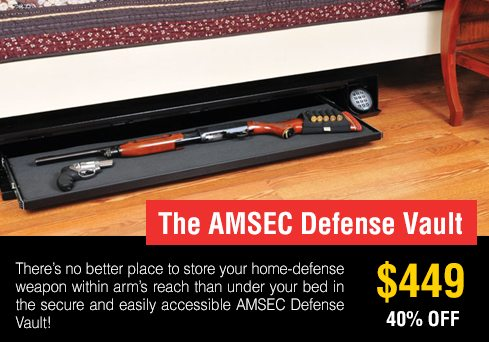 AMSEC-Defense-Vault